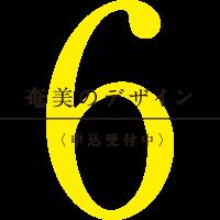 奄美のデザイン